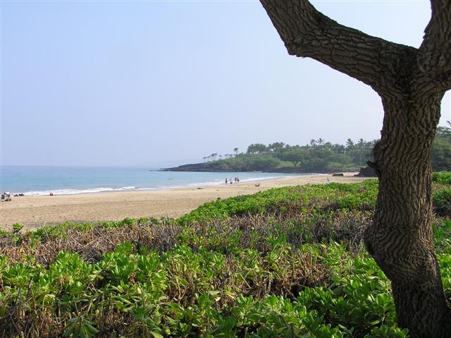 035_beach__small_